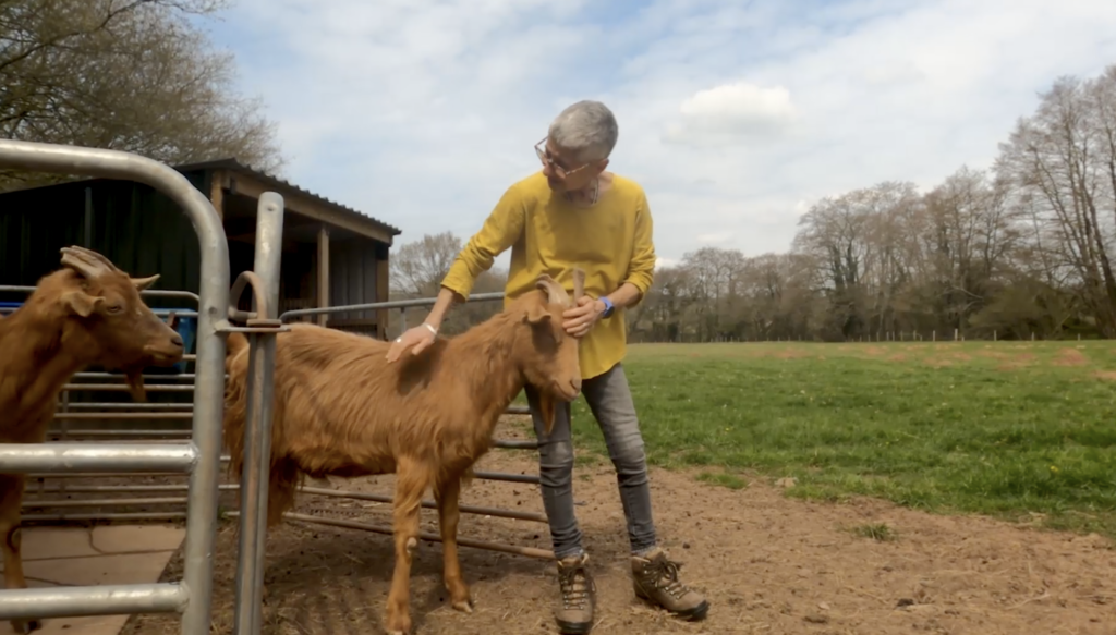 Debbie Cohen in a yellow top and jeans petting one of the goats she keeps on her farm